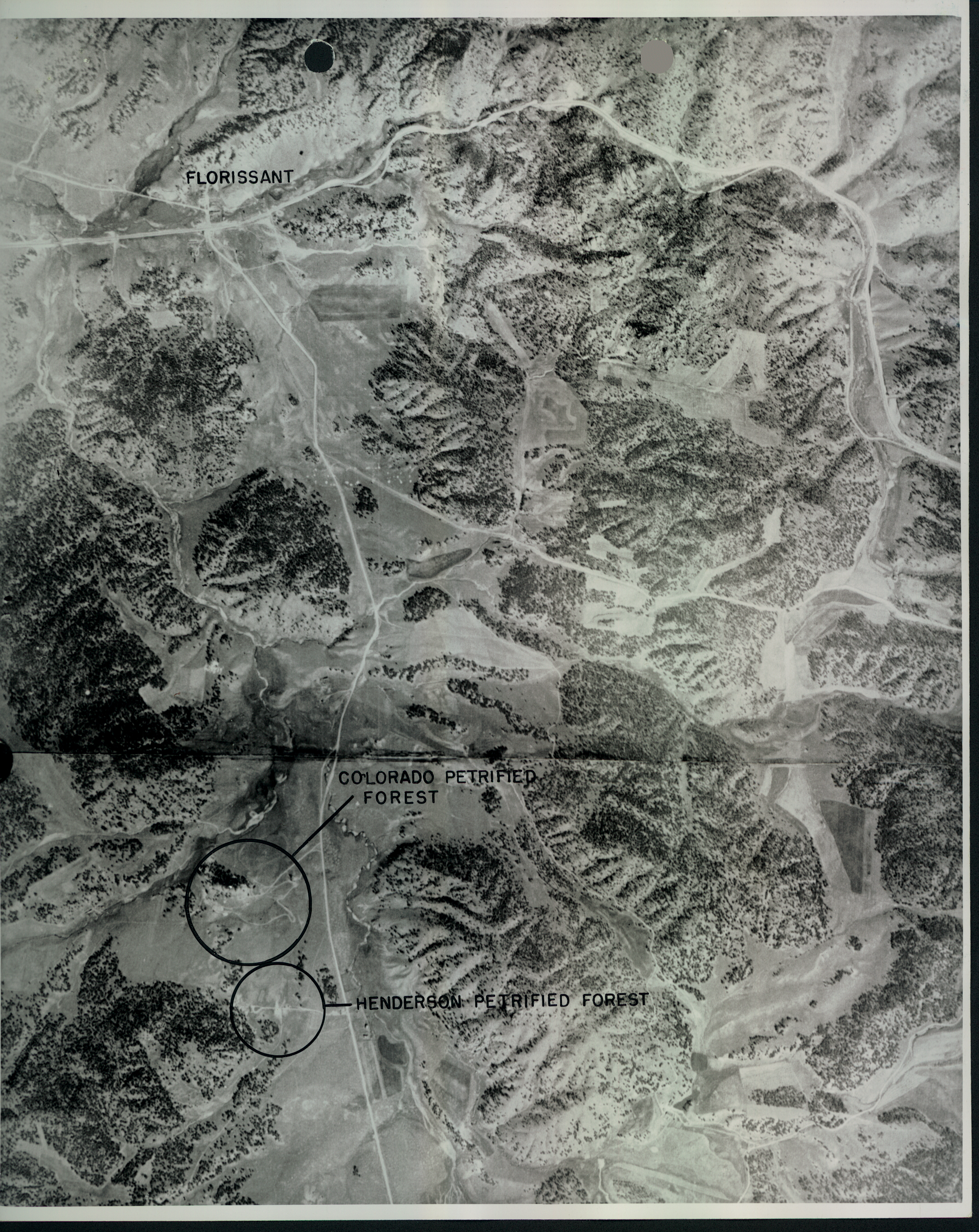 Aerial photograph of the proposed park area with both petrified forest attractions marked.