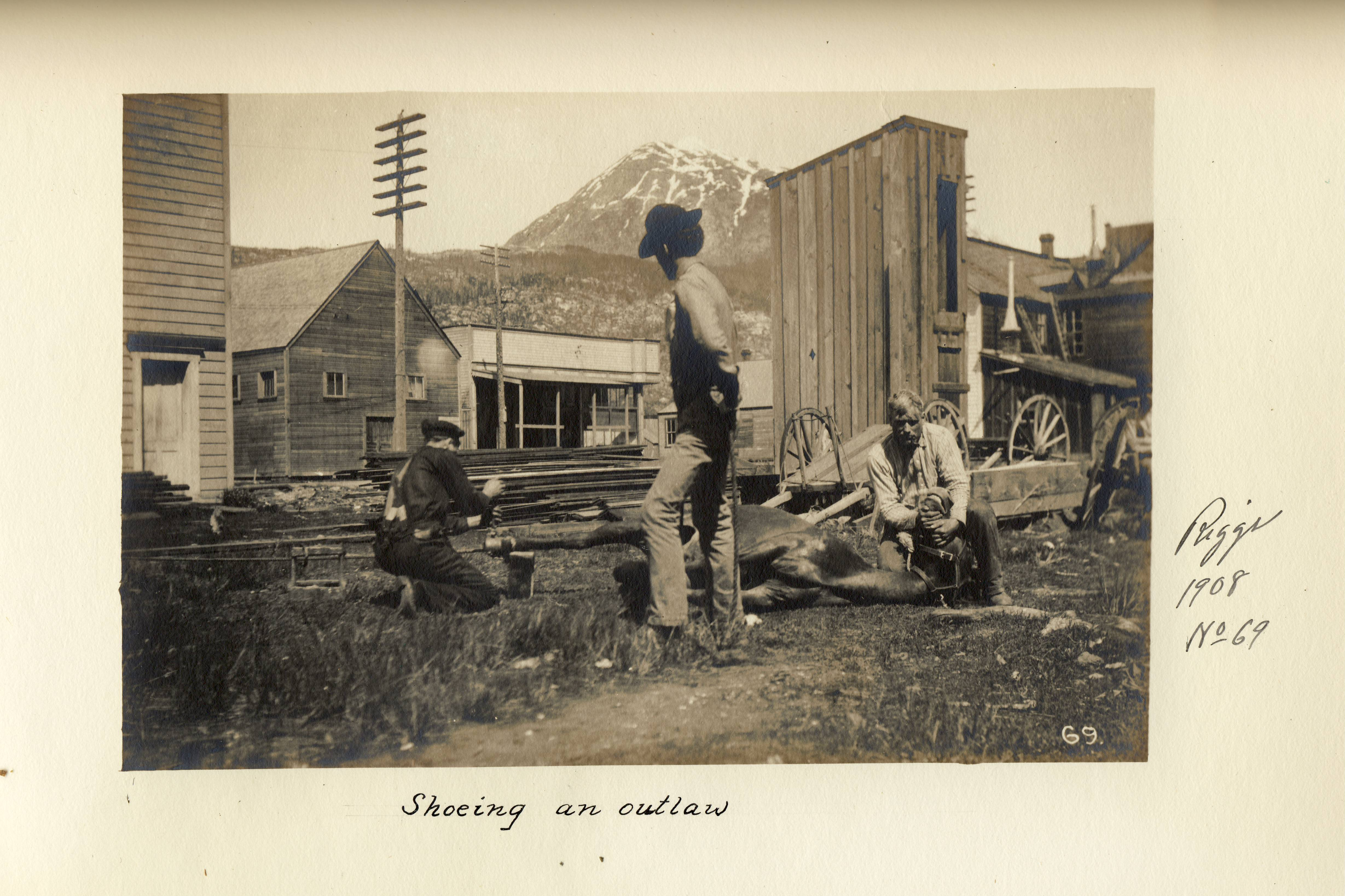 photo of men putting shoes on a horse
