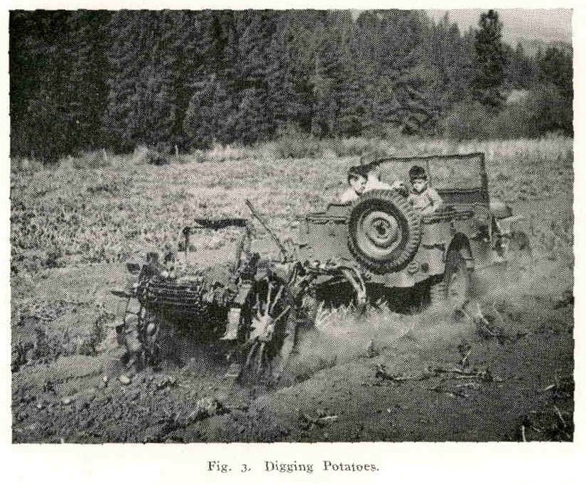 picture of a jeep towing a plow behind it used to dig potatoes
